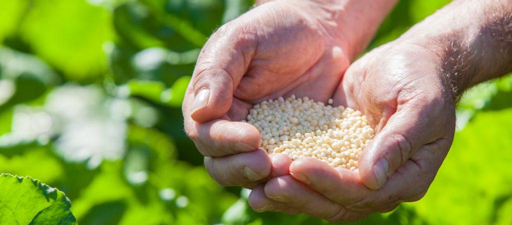 Hogyan működik az Agromaster burkolt műtrágya?, főkép