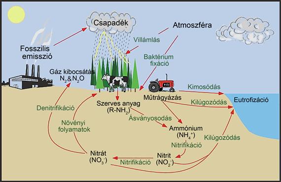 A kimosódás okozta nitrogénveszteségek elkerülése, főkép