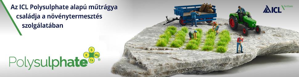 Polysulphate® – Egy új, organikus ásványi tápanyag, a szántóföldi és takarmány növények minőségének és hozamának javítására, főkép