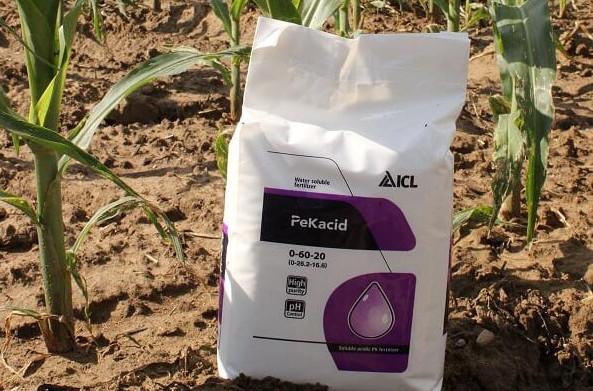 Agroleaf Power és PeKacid használata a jelenlegi szántóföldi kultúrákban, főkép